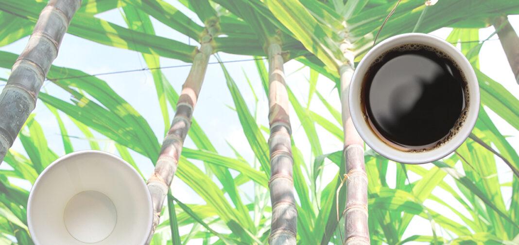 Koffiebekers Moonen Packaging suikerriet circulair product circulaire economie Modulo Milieustraten Care4Circulair